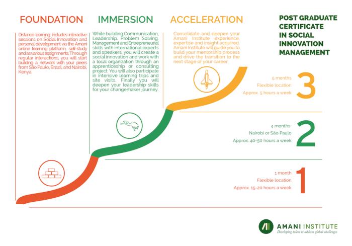 Amani institute program structure