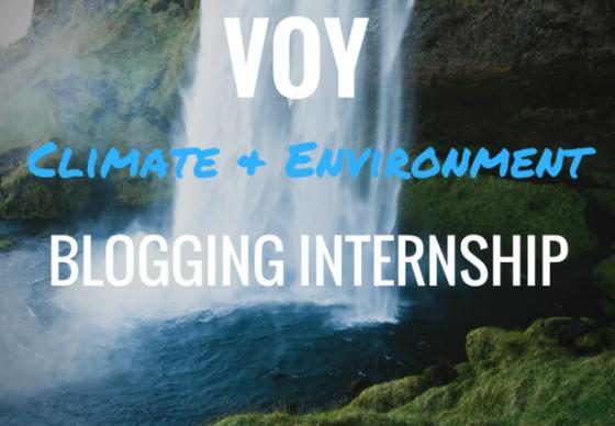 Voices of Youth blogging internship UNICEF VOY