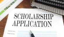 Heinrich Böll Foundation scholarship