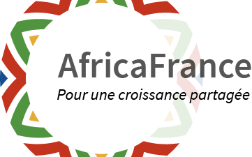 Africa France Young Leaders Program