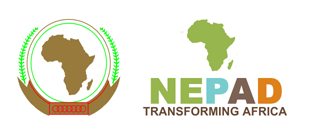NEPAD Call for Good Practices in Skills Development for Africa | Diplomacy Opportunities