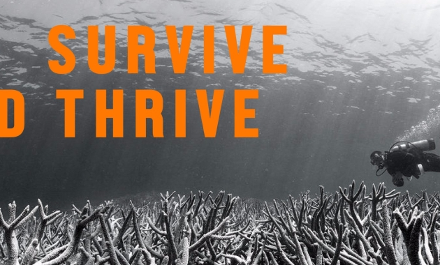 Climate Tracker 1.5ºC Survive and Thrive Campaign