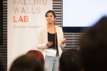 Falling Walls Fellowship