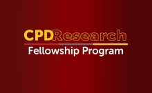 University of South Carolina Center on Public Diplomacy Research Fellowship Program