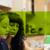 Misk Foundation and Bill & Melinda Gates Foundation Grand Challenges