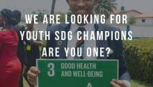 Nigerian Youth SDGs Network Call For SDGs Champions