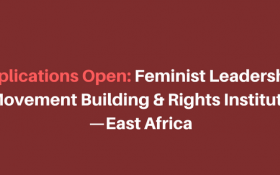 Feminist Leadership, Movement Building and Rights Institute Training