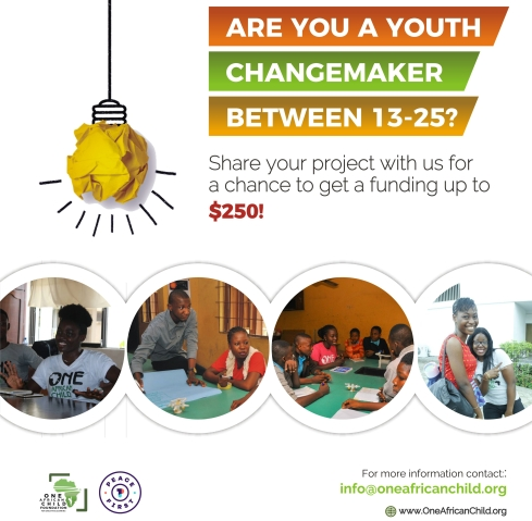 $250 Mini Grant For Youth Changemakers