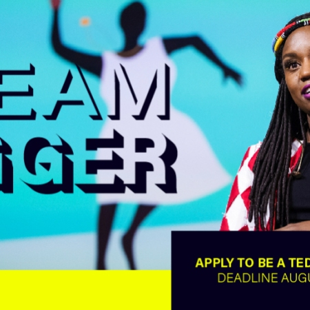 Ted Fellow 2019 application