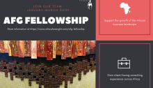 Africa Foresight Group Fellowship