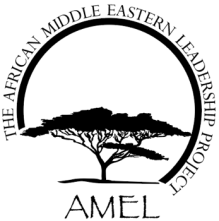 African Middle Eastern Leadership Project (AMEL) Institute