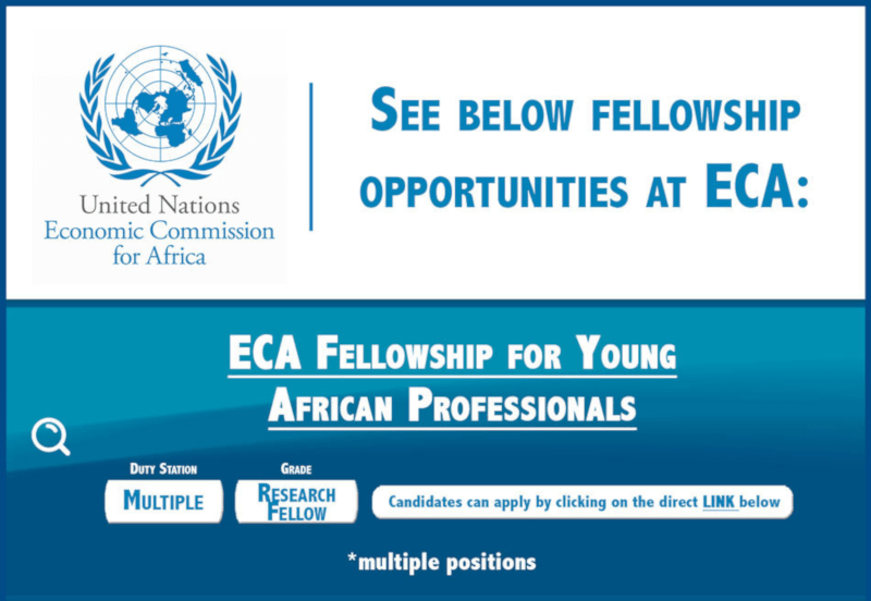United Nations Economic Commission for Africa Fellowship For Young African Professionals