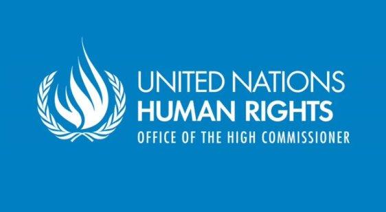 united-nations-human-rights-minorities-fellowship