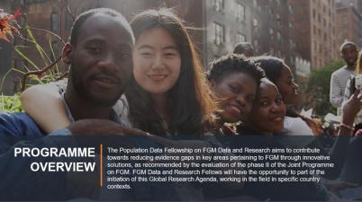 United Nations Volunteers and UNFPA call for Population Data Fellows for FGM Data and Research