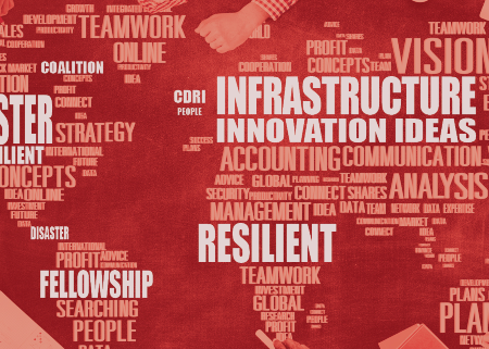 Coalition forDisaster Resilient Infrastructure (CDRI)Fellowship